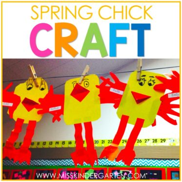 The Cutest Spring Chick Craft