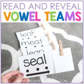 Reading Vowel Team Words with Read and Reveal Cards
