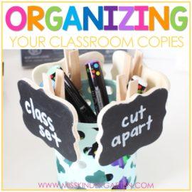 Chalkboard Copy Clothespins