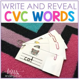 Writing CVC Words with Write and Reveal Cards
