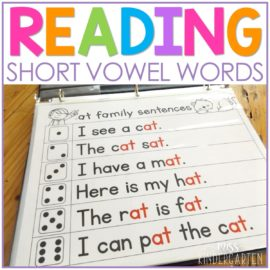 Short Vowel Reading Fluency