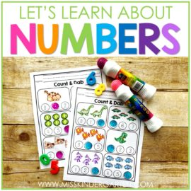 Teaching Number Sense in your Homeschool