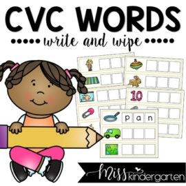 CVC Words Spelling Cards