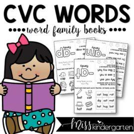 CVC Words Word Family Books