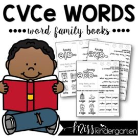 CVCe Magic e Words Word Family Books