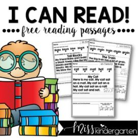 Reading Fluency Passages FREEBIE