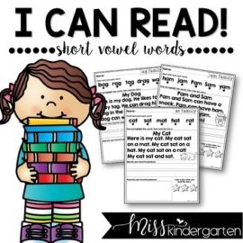 Reading Fluency Passages Short Vowel Words   Distance Learning and Seesaw