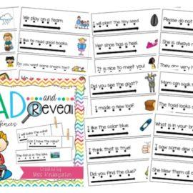 Simple Sentences | Sight Word Sentences with Vowel Teams