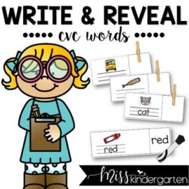 Word Work CVC Words Write and Reveal