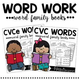 Word Work Word Family Books