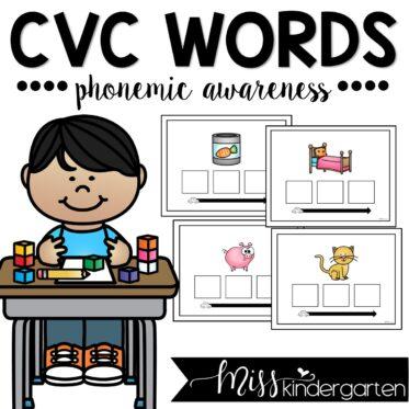 Phonemic Awareness Sound Boxes