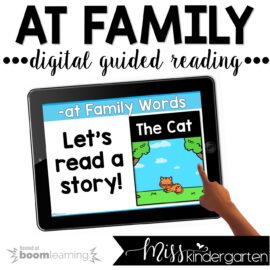 Digital Guided Reading Boom Cards™ Short Vowel Freebie
