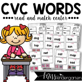CVC Words Read and Match Envelope Center